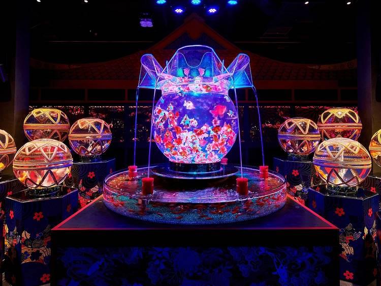 日本橋アートアクアリウム美術館が9月26日に閉館、移転を発表