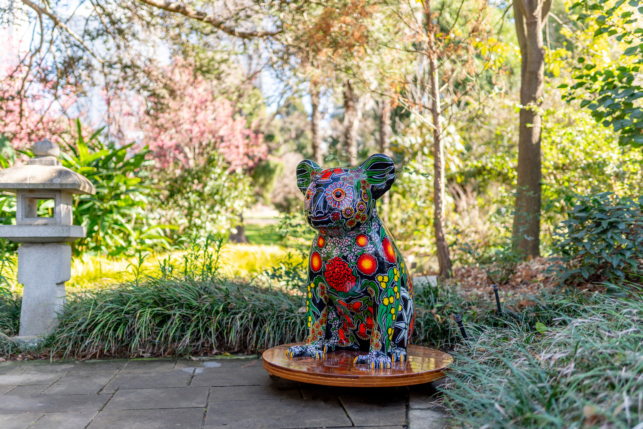 The Hello Koalas Sculpture Trail is headed to Campbelltown