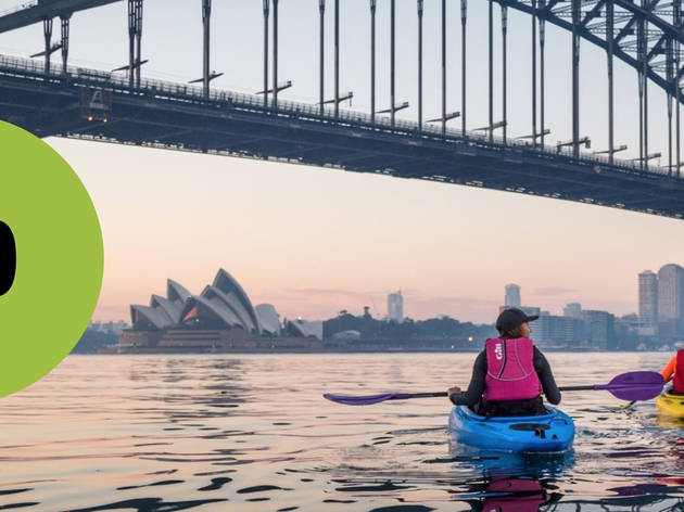 Kayakers on Sydney Harbour at dawn