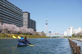 Kyunaka River cherry blossom kayak cruise