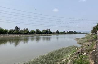 Kam tin river