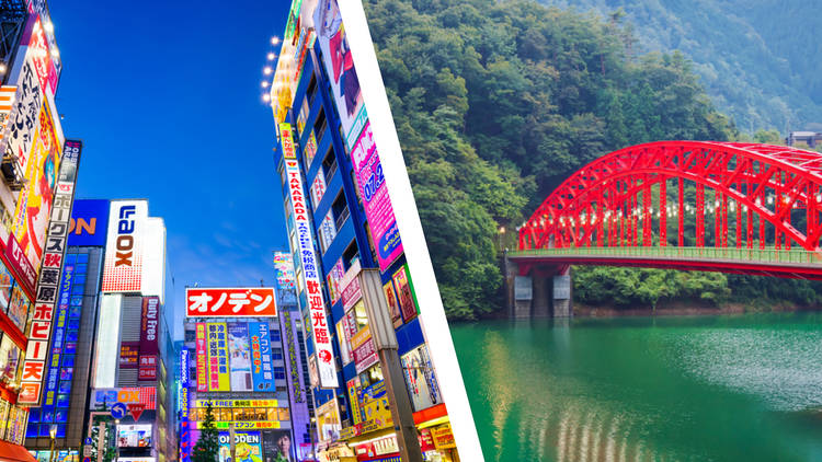 Tokyo fusion trip
