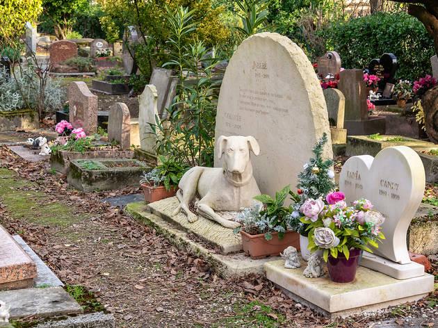 Cementiri de mascotes a França