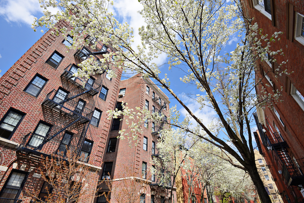 10 great ways to celebrate the start of spring in NYC