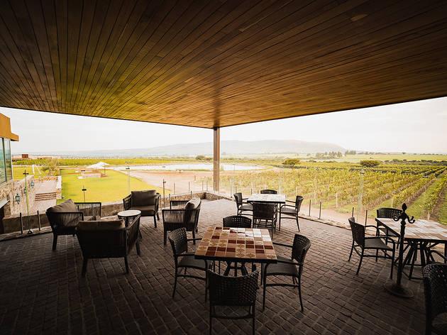 Restaurante con mesas en terraza con vista a un viñedo