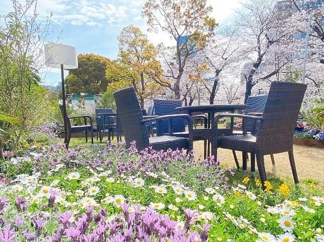 Blossom Lounge