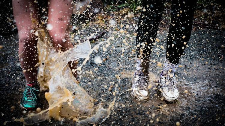 Lama, mud, chuva, poça