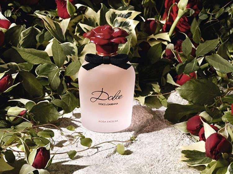 Dolce Rosa Excelsa, Dolce & Gabbana