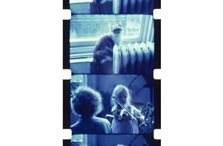 ジョナス・メカス 《猫のサンシャインに見守られヴァイオリンの練習をするウーナ、ソーホー、ニューヨーク、1977年》 「いまだ失われざる楽園」より 1977年 個人蔵
