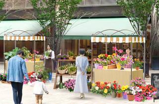 Hibiya Blossom 2021