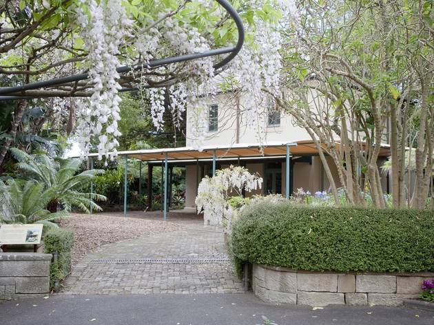 spring walk looking to Lions Gate lodge for venue hire