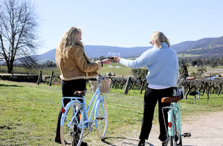 Two people cheers with glasses of shiraz outside at Mount Langi Ghiran. They are both standing beside bicycles. A sunny vineyard and mountains can be seen in the background.
