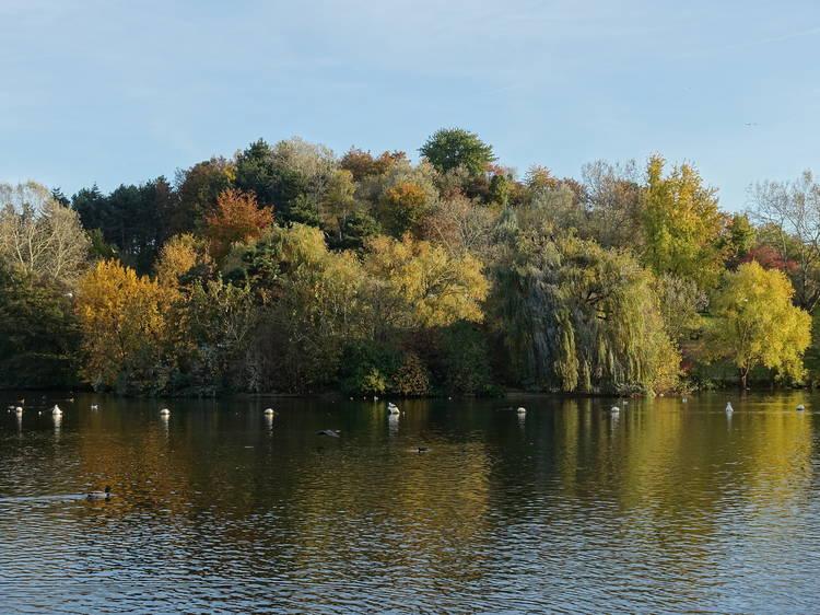 Le parc Georges-Valbon