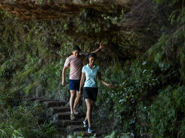 Two people descend a stone stairway on the Wentworth Pass Track in the Blue Mountains