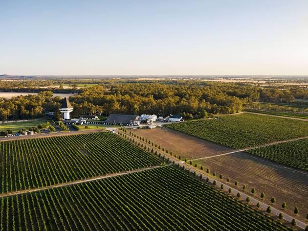 Mitchelton Winery aerial shot