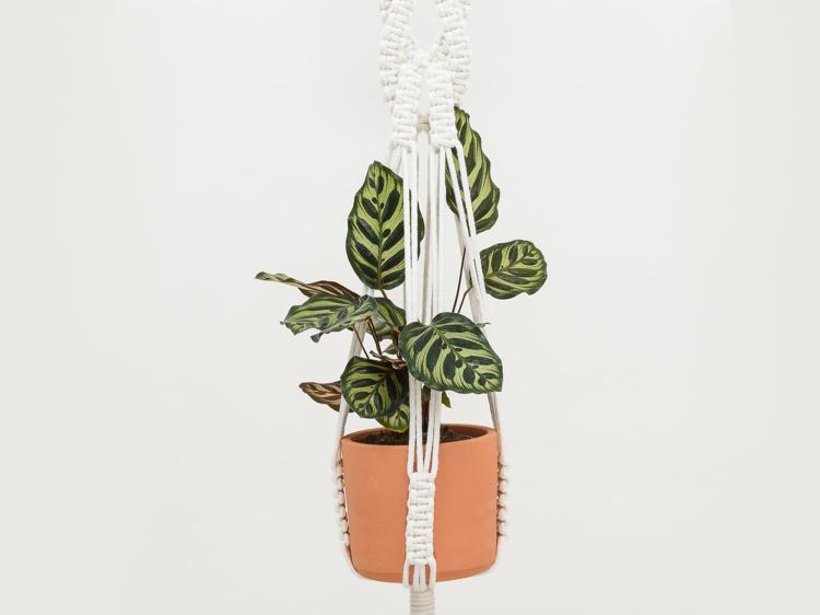 Klumba – Atelier floral