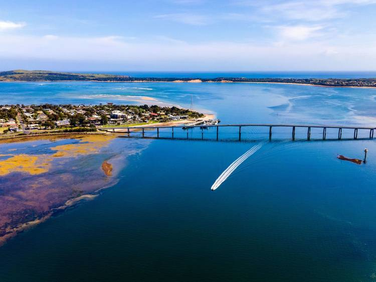 Your essential road trip guide to Phillip Island