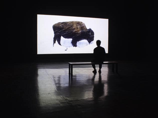 Re-habitar LAA (Foto: Cortesía Laboratorio Arte Alameda)