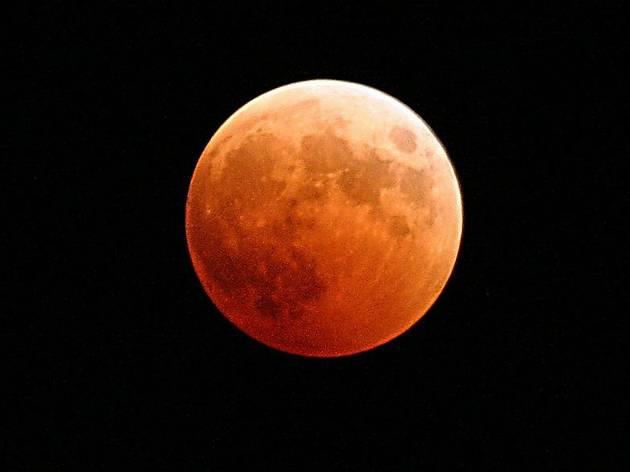 """Une """"super lune"""" dite rose va éclairer le ciel de Paris le 27 avril"""