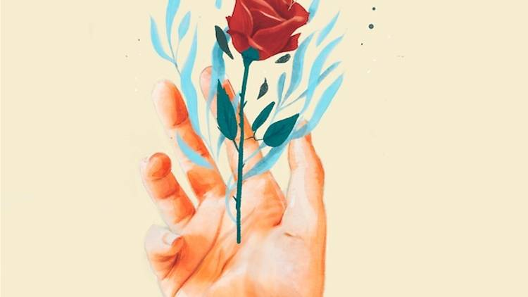 Rosa de Sant Jordi, Casa Seat, Naranjalidad