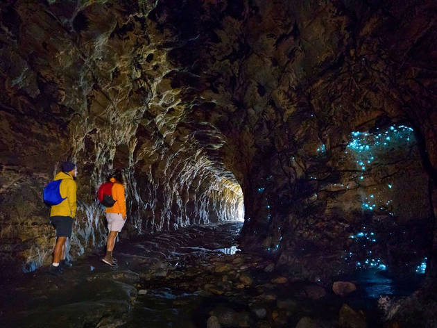 Two hikers marvel at the light show in Wollemi National Park's Glow Worm Tunnel