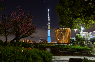 Sumida River Sky Tree night walk