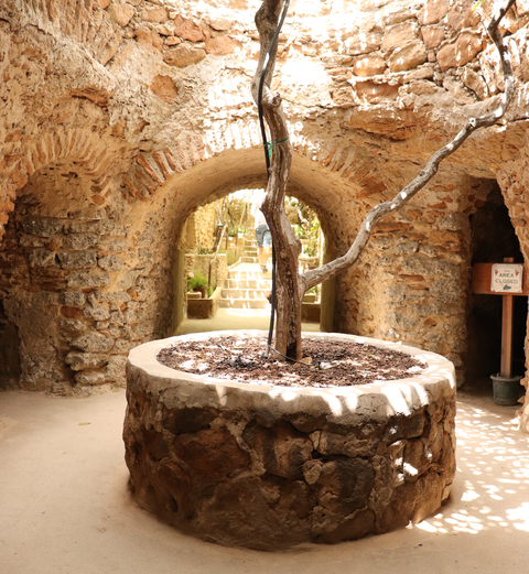 Forestiere Underground Gardens