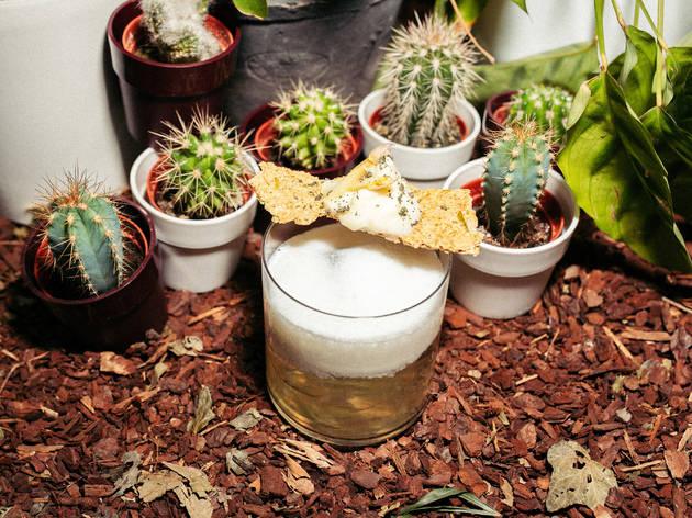 """Shake It Green #2 : le """"Jardin"""", la recette cocktail zéro déchet du bar House Garden"""