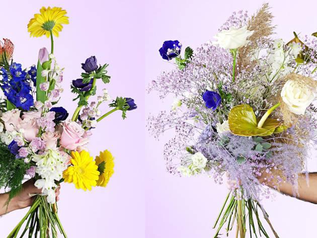 Floripondios