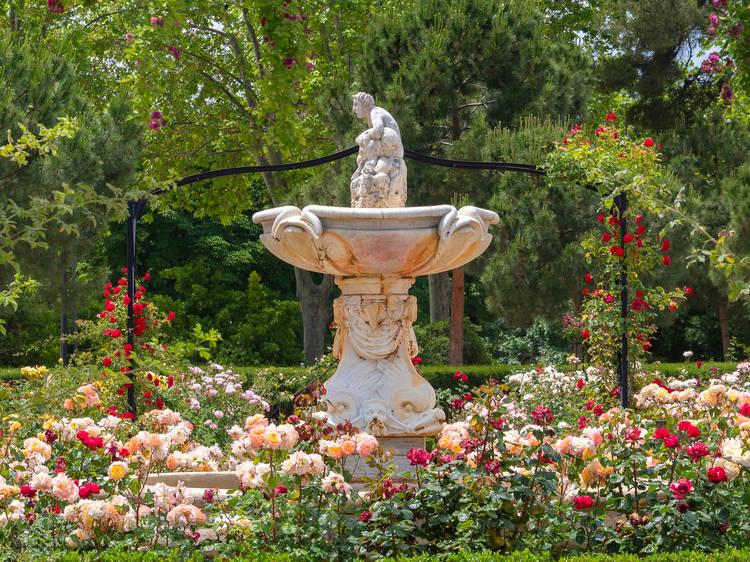 Las rosaledas más espectaculares