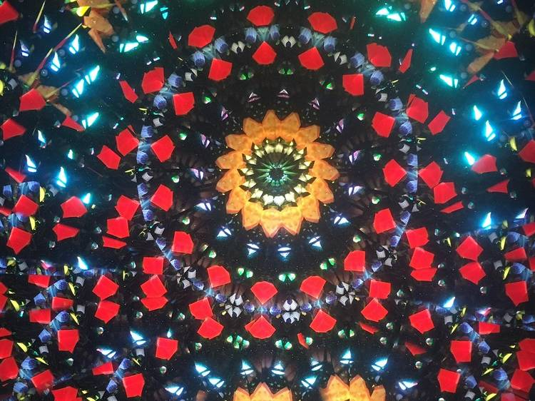 See 'the brightest colours ever' at Kew Gardens