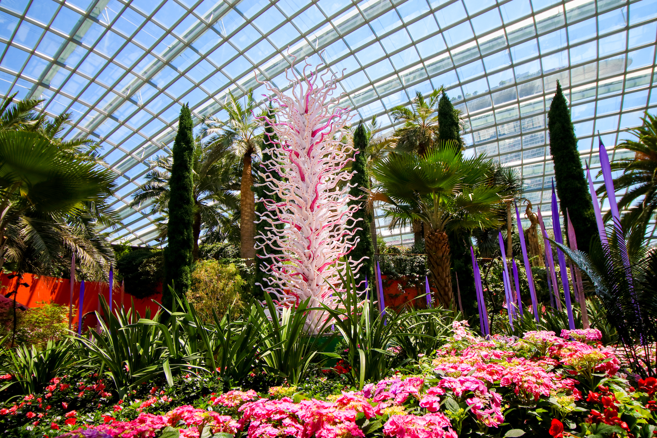 Dale Chihuly: Glass in Bloom