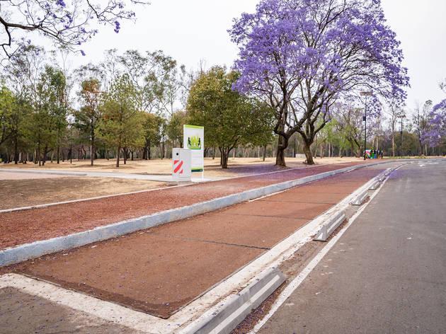 Ciclovía Inteligente Bosque de Chapultepec
