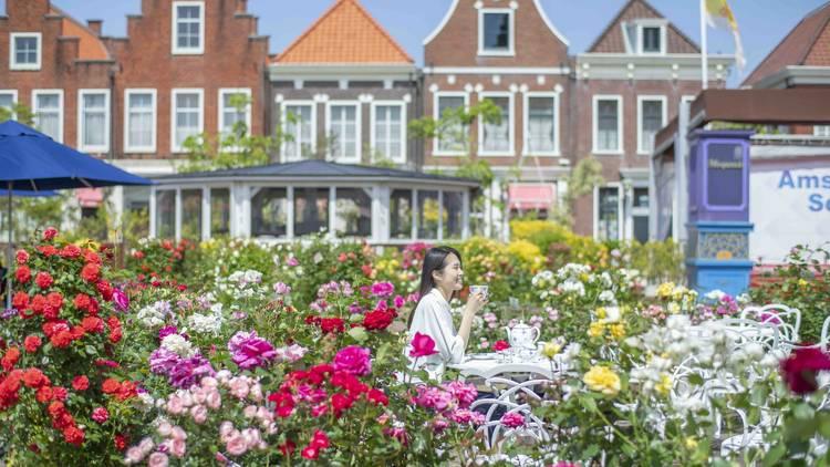 Huis Ten Bosch Rose Festival