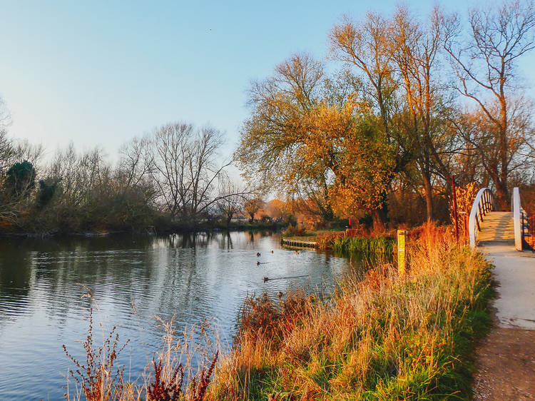 River Isis, Port Meadow, Oxford