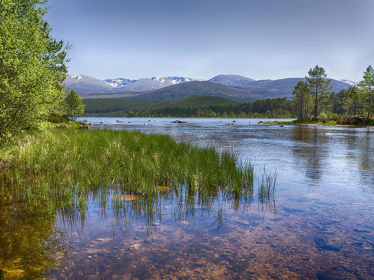 Loch Morlich, Highlands