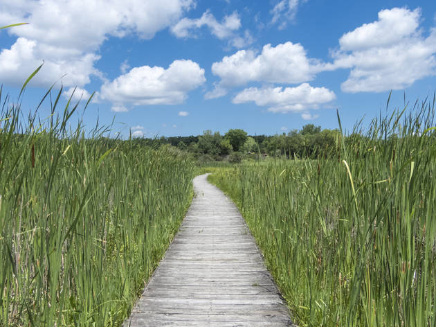 Moraine Hills State Park In Mchenry, Illinois
