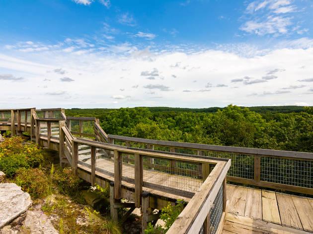 Wooden walkway on side of bluff in Castle Rock State Park, Illinois.
