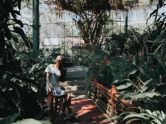 Butterfly Park & Insect Kingdom