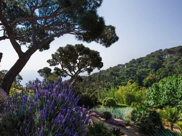 Jardins de Cap Roig, Costa Brava