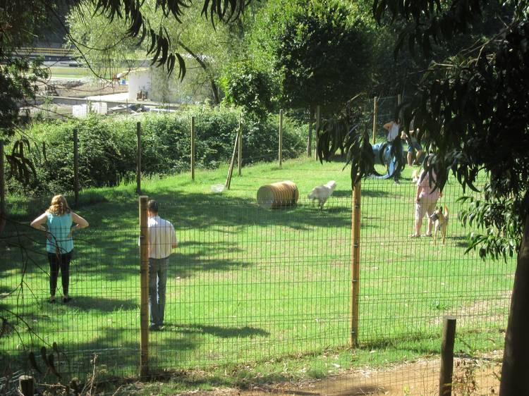 Parque Canino da Quinta do Passal