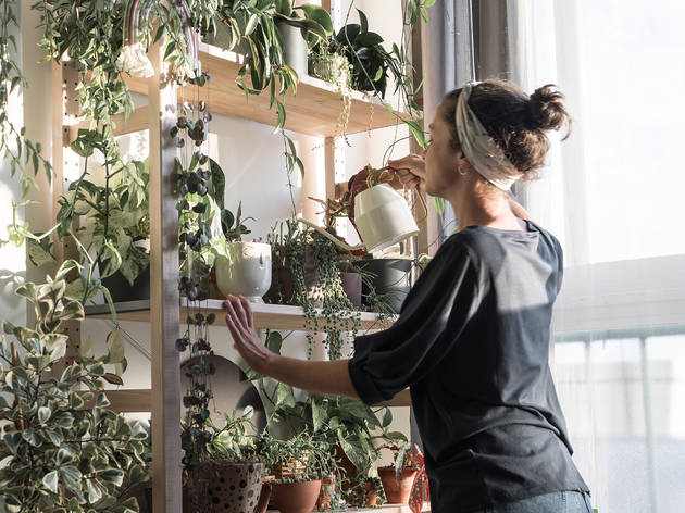 Plantas, @_almoinha_, Ana Mestre