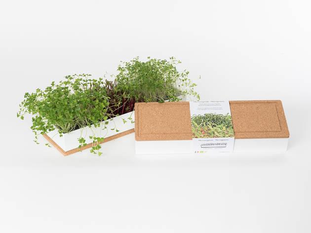 Compras, Plantas, Sementes, Life in a Bag