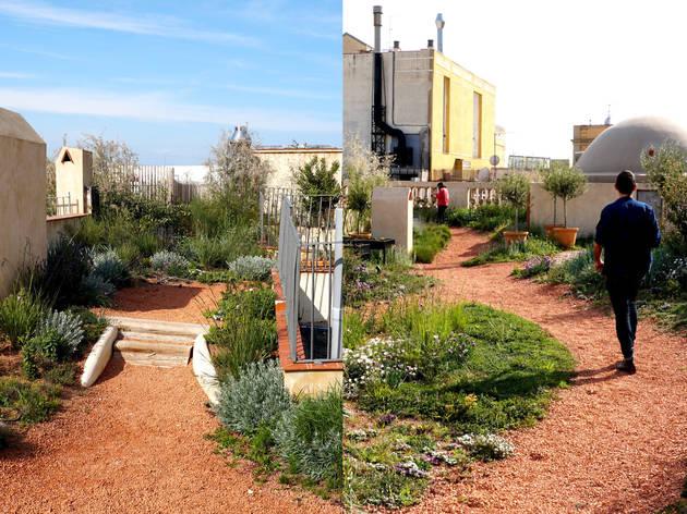 Pugem a un dels jardins més grans de Barcelona, construït en un terrat