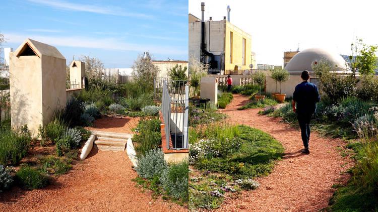 Coberta verda del Terrat d'en Xifré de Barcelona