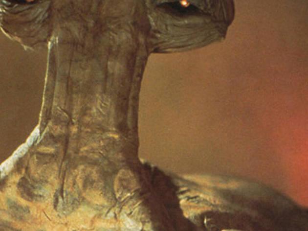 "Still of Momaw Nadon, also known as ""Hammerhead"""