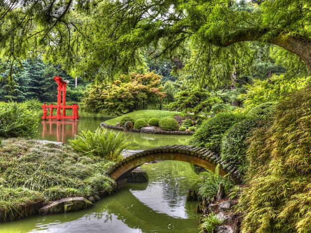 Japanese Garden in the Brooklyn Botanic Garden