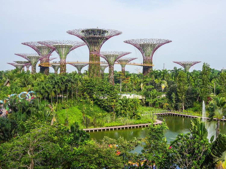 Singapore Botanical Gardens   Singapore