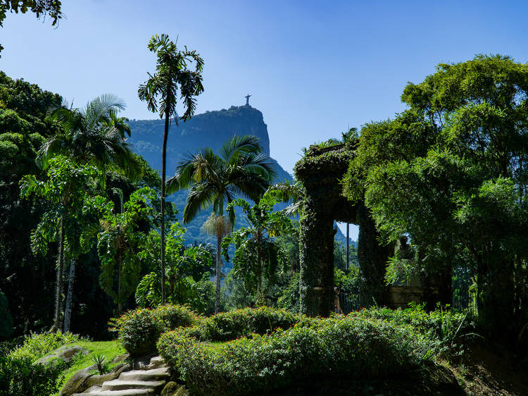 The 12 best botanical gardens in the world