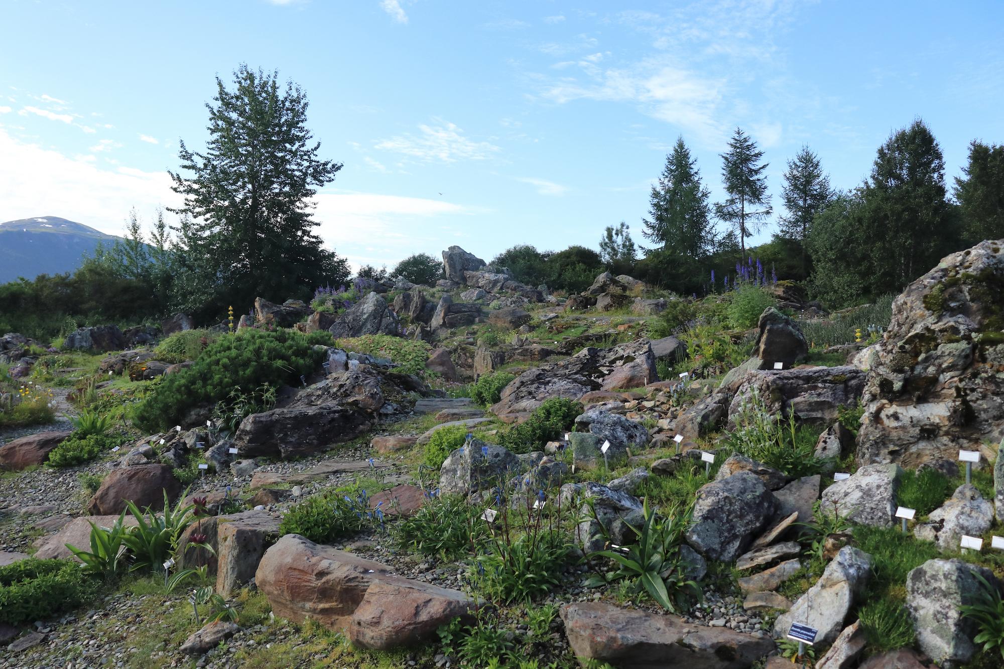 Arctic-Alpine Botanical Garden, Norway